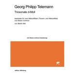 Telemann, GP: Trio sonata in d minor TWV 42:g6 arr. for Recorders by Martin Nitz